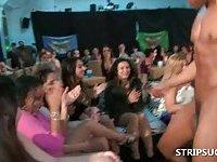 Bitches sucking stripper